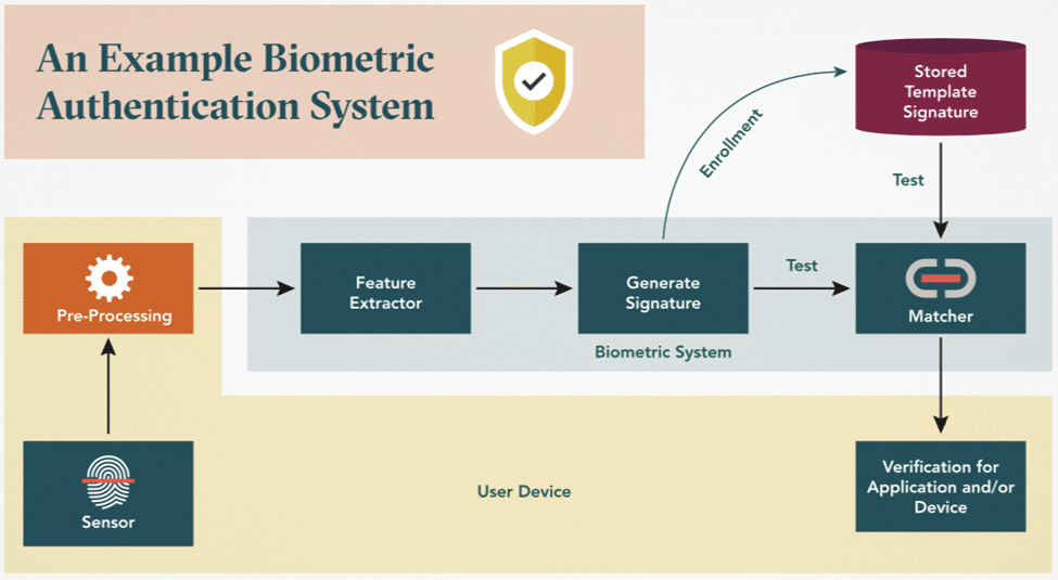 Perspective Is Key to Securing Valuable Claims in Biometric